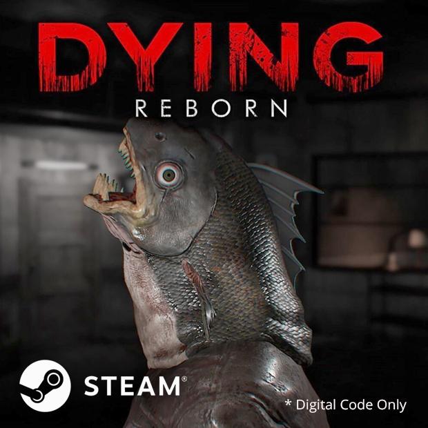 DYING Reborn Steam Code (English/Chinese) 臨終 重生試煉
